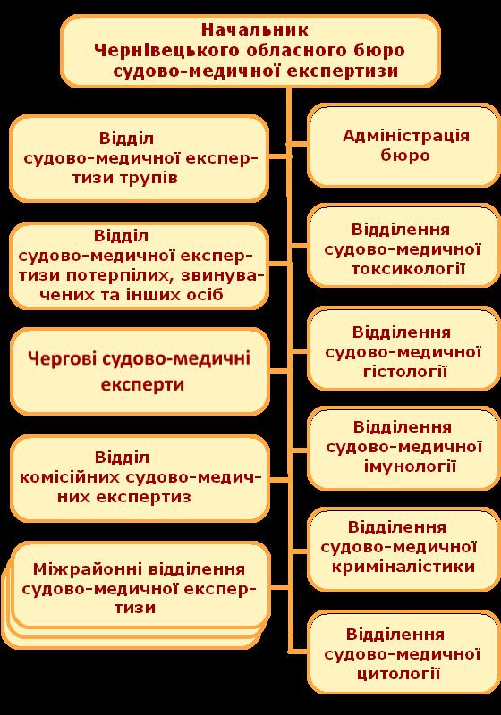 Структура бюро